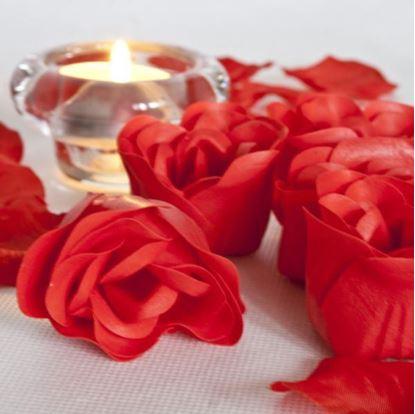 Obrázek Romantické okvětní lístky růže