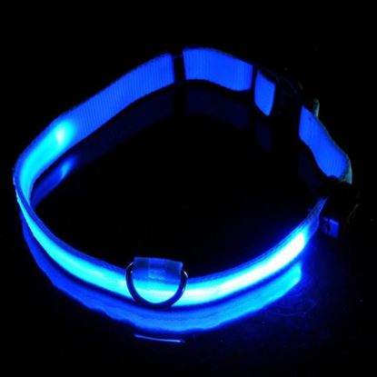 Obrázek Svítící obojek - modrý L