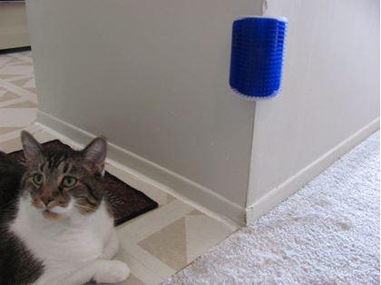 Obrázek z Masážní kartáč pro kočky