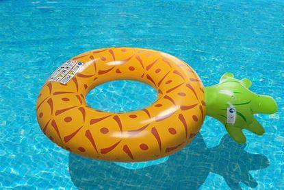 Obrázek Nafukovací kruh ananas