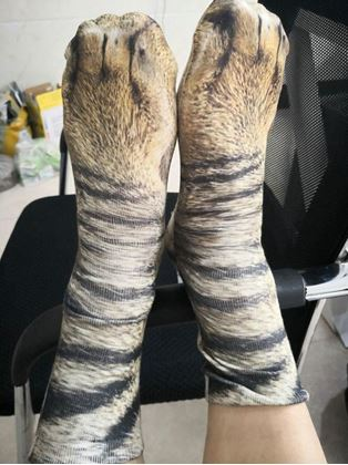 Obrázek z Zvířecí ponožky