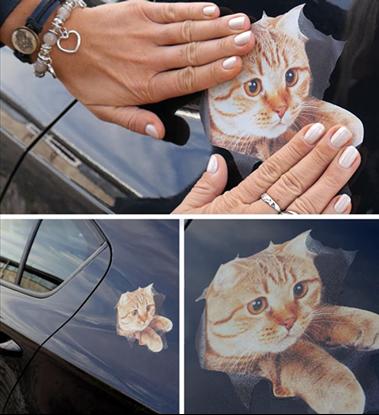 Obrázek Nálepka - kočka
