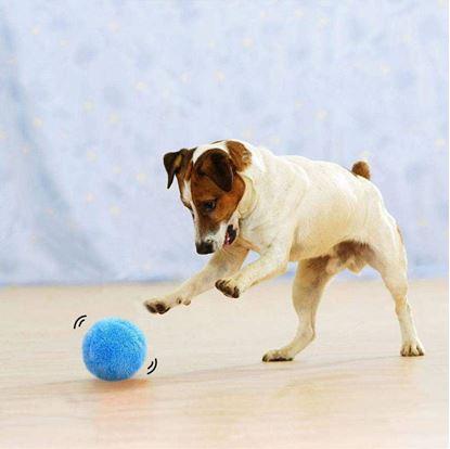 Pohyblivý míček pro mazlíčky