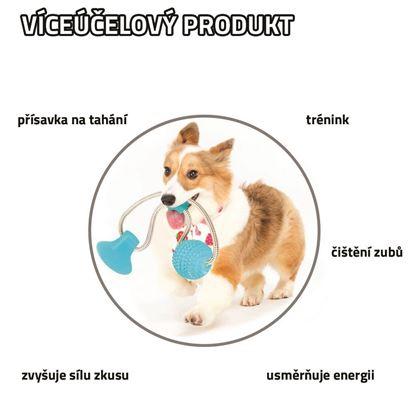 Hračka psí