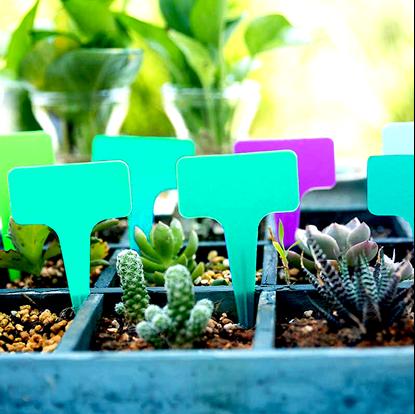Štítky k rostlině