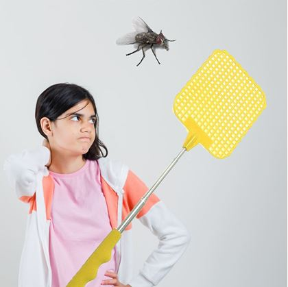 placacka na hmyz