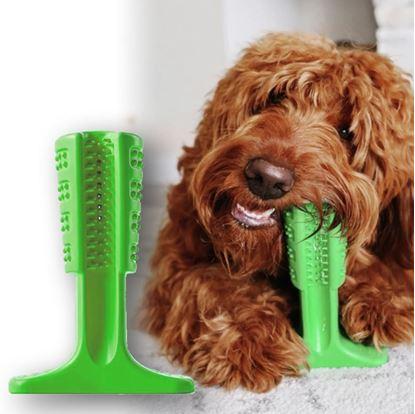 kartáček na zuby pro psy
