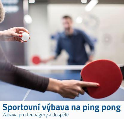 Ping pong sada