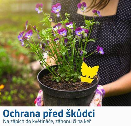 Ochrana rostlin