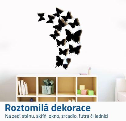 Nalepovací motýlci na zeď